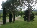viale d'ingresso al Relais